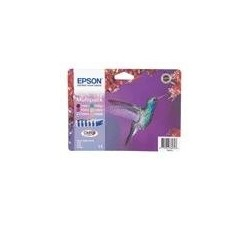 6 Tinteiros EPSON PhotoR265/R360/RX558/685/PX700 C13T0807401